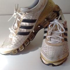 a7f2add2188 Tenis Sneakers Oncinha Dourado - Encontre mais belezas mil no site ...