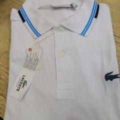 f40a90ba01760 camisa polo lacoste algodão com elastano branca tam.p