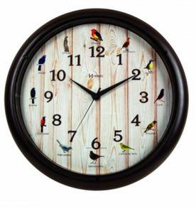 229e49f2e1d relógio parede sweep canto passaros brasileiros herweg 6691