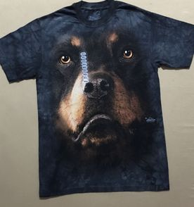 dfff37be37 Camiseta The Mountain - Encontre mais belezas mil no site  enjoei ...