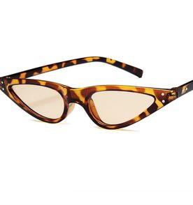 Oculos Vintage Oncinha - Encontre mais belezas mil no site  enjoei ... 560addeeed